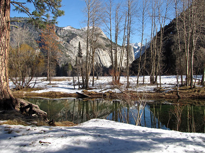 Yosemite Gallery Eight