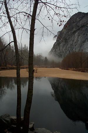 Yosemite Gallery One