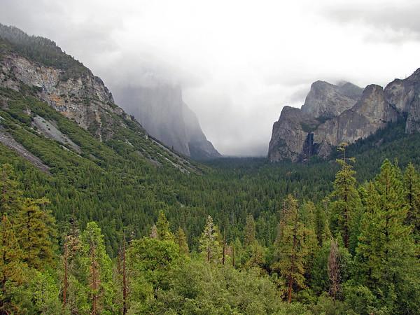 Yosemite Gallery Seven
