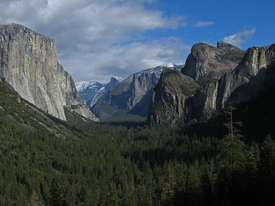 Yosemite Gallery Six