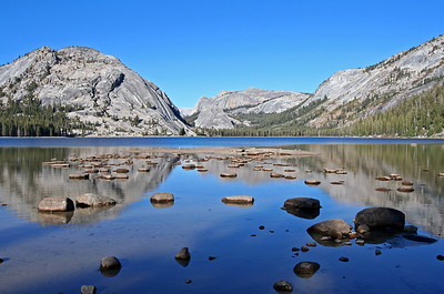 Yosemite Gallery Three