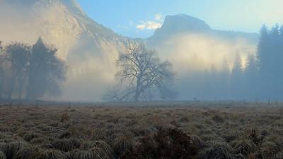 Yosemite Gallery Twenty-Three