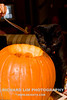 Suki and the pumpkin.