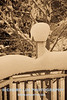 snow-play-0011