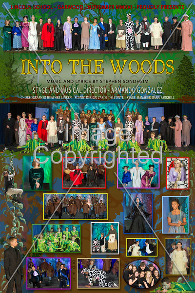 12x18 GARWOOD   INTO WOODS poster