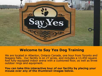 www.clickerdogs.com<br /> Say Yes Dog Training Inc <br /> (Susan Garrett)
