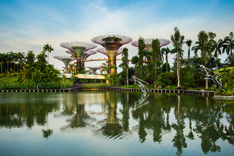 Singapore Garden by the bay on twilight sky