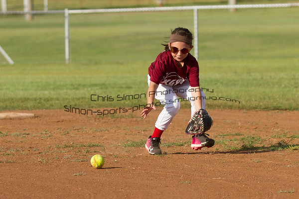 LITTLE LEAGUE BASEBALL & SOFTBALL 2017