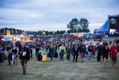 Festival Crowds (Evening)