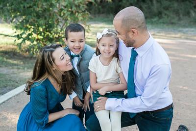 Vega and Extended Family