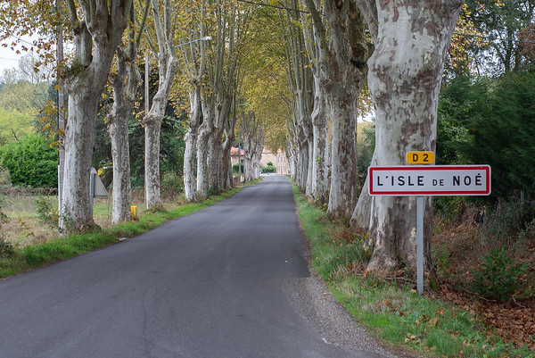 L'Isle de Noe in France.  This is the village that my great grandfather was from.  He left there to emigrate to the US in 1864.