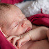 1 Cali Newborn session (85)