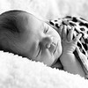 1 Cali Newborn session (83)