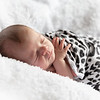 1 Cali Newborn session (84)