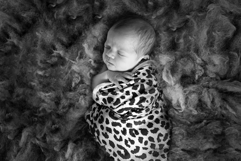 1 Cali Newborn session (8)