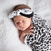 1 Cali Newborn session (3)