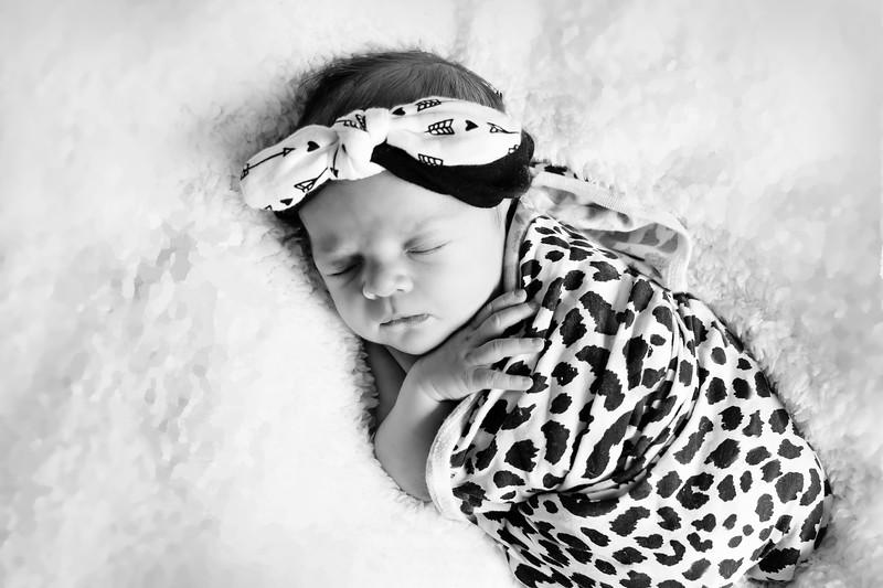 1 Cali Newborn session (4)