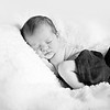 1 Cali Newborn session (79)