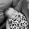 1 Cali Newborn session (68)