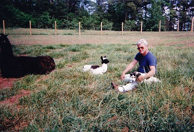 """Relaxing in the pasture with """"Lady"""" & there is Azul with her mom, PPR Reno"""