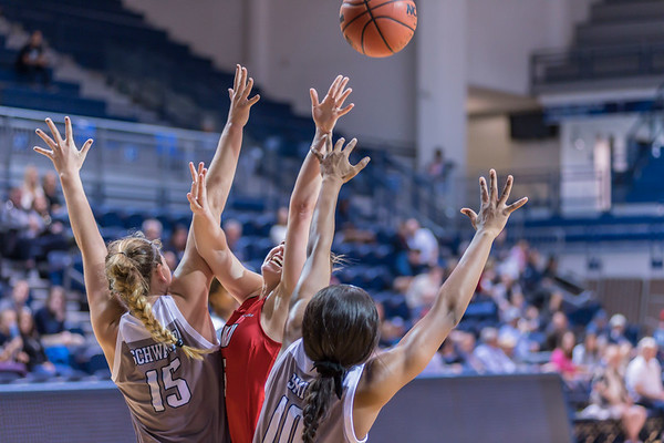 NCAA WBB - Rice Owls v Western Kentucky Lady Toppers