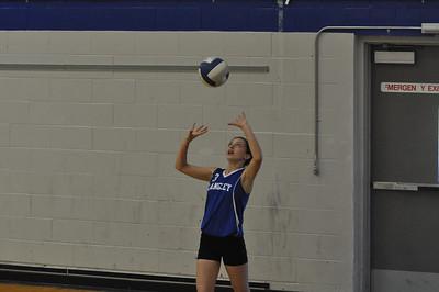 Volleyball Jamboree