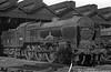 45516 The Bedfordshire and Hertfordshire Regiment Preston shed