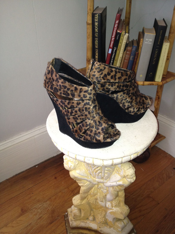 'Kitten Shoes'