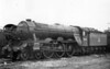60044 Melton Neasden shed February 1956
