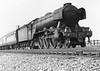 60044 Melton Gresley A1