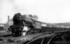 60052 Prince Palatine departs Marylebone with the 'Master Cutler' service to Sheffield 1st June 1949