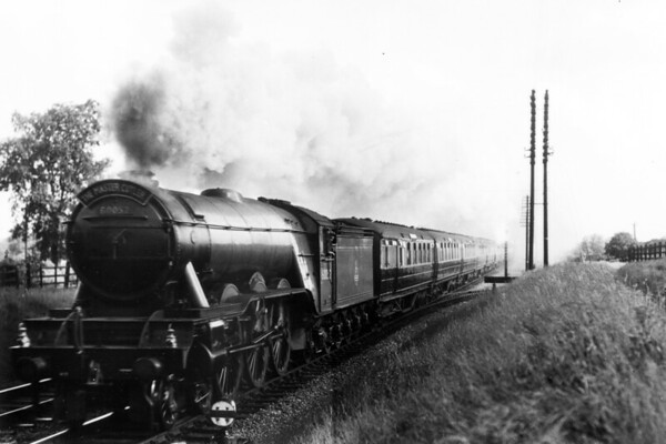 60052 Prince Palatine with the 'Master Cutler' unknown location or date