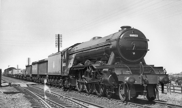 60053 Sansovino with an ordinary freight including 3 old tenders