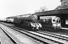 60063 Isinglass busy Doncaster   A Peak Diesel behind the 1st gen dmu