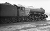 60074 Harvester stand by loco at Neville Hill shed 22nd February 1963
