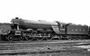 2502 Hyperion Gresley A3