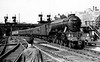 60103 Flying Scotsman Kings Cross 3 51pm arrival from Leeds 21st August 1961