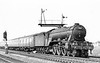 60110 Robert the Devil Potters Bar 1955 Gresley A3