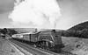 60002 Sir Murrough Wilson near Granthouse 26th June 1954