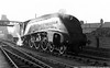 60008 Dwight D  Eisenhower Cambridge shed 17th January 1954