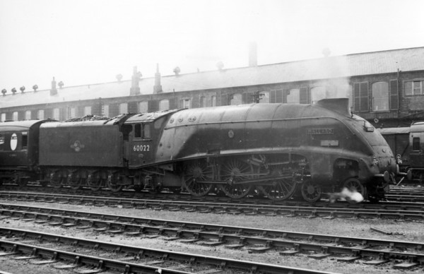 60022 Mallard Doncaster 10th July 1959