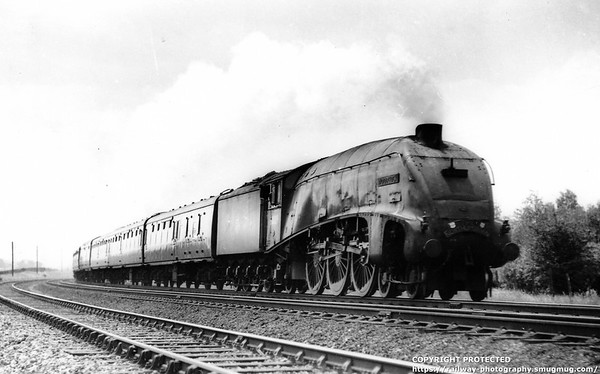 60029 Woodcock Northumbrian Offord 6th June 1953