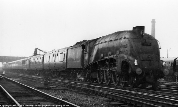 60033 Seagull Doncaster Gresley A4