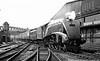 60033 Seagull arriving Paddington, loco exchanges 1948----------
