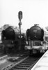 60119 Patrick Stirling & 60123 H A  Ivatt alongside each other unknown location