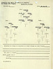 AUG 13 1944 FORMATION 2
