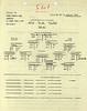AUG 30 1944 FORMATION 2