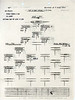 JULY 7 1944 FORMATION 2