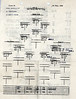 JULY 14 1944 FORMATION 2