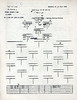 JULY 21 1944 FORMATION 2